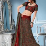 Latest Indian And Pakistani Lehnga Choli Collection 2012