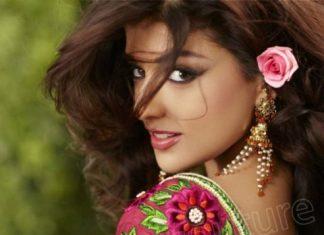 Wedding Sarees Blouse And Lehanga Sarees 2013 By Natasha (6)