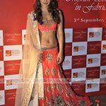 priyanka chopra Wedding Saree Lehenga 2014 By Manish Malhotra