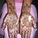 Chic Mehndi Designs