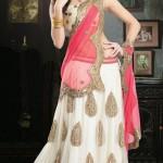 Beautiful Lehenga Choli by Kaneesha (4)