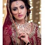 Pakistani Bridal Makeup Ideas 2016 by Hadiqa Kiani Signature Salon (5)